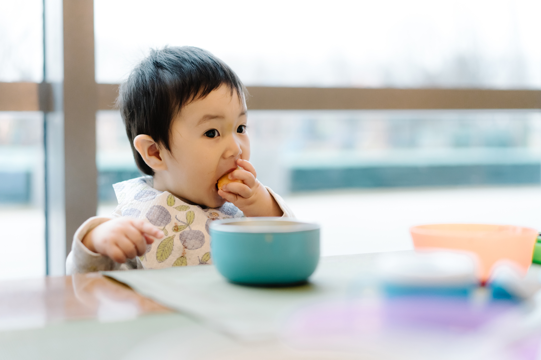 Top Five Nutrients Your Toddler Needs