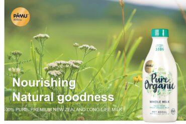 Pāmu – tiên phong trong nguồn sữa hữu cơ, thuần tự nhiên